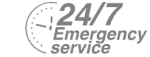 24/7 Emergency Service Pest Control in Pimlico, SW1. Call Now! 020 8166 9746